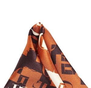 Карманный платок для мужчин (Коричневый) Gianfranco Ferre